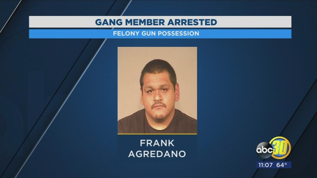 Bulldog gang member arrested in Calwa for felony possession of a gun