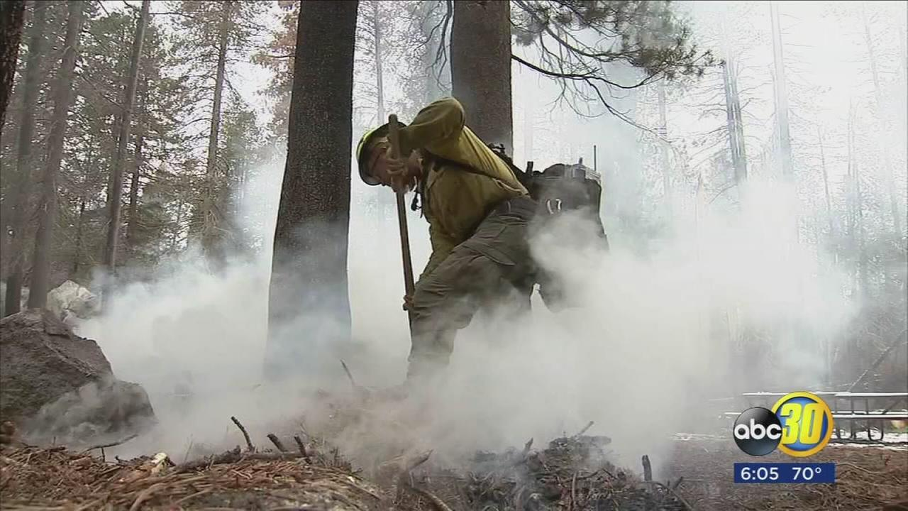 Yosemite park officials say allowing some wildfires to burn saves money while improving the forest
