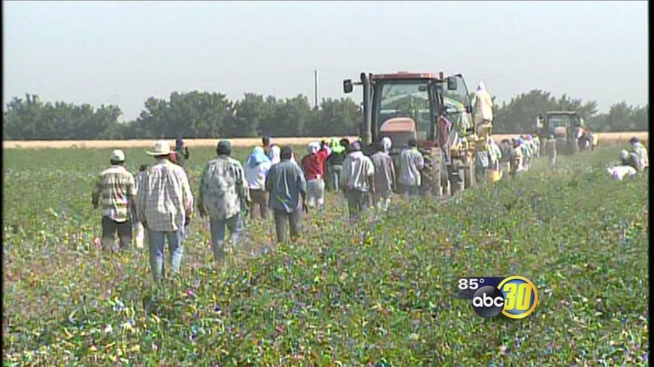California helping farm laborers pay bills due to drought