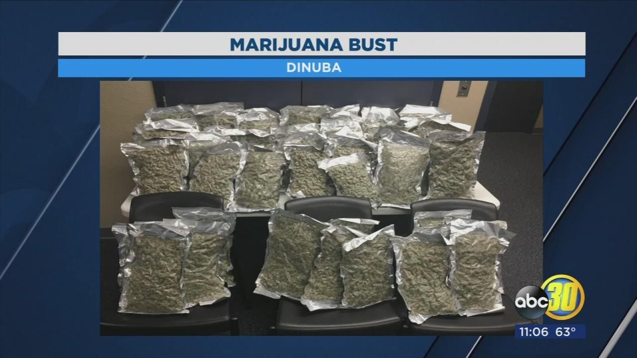 Reedley man arrested when 20 lbs. of neatly packed marijuana was found in his car