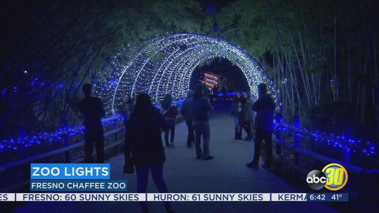 Fresno Chaffee Zoo Doubles as Winter Wonderland