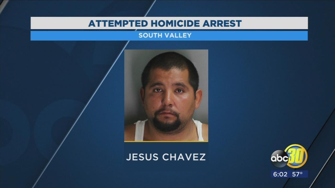 Man accused of shooting 2 cars in the Valley in custody