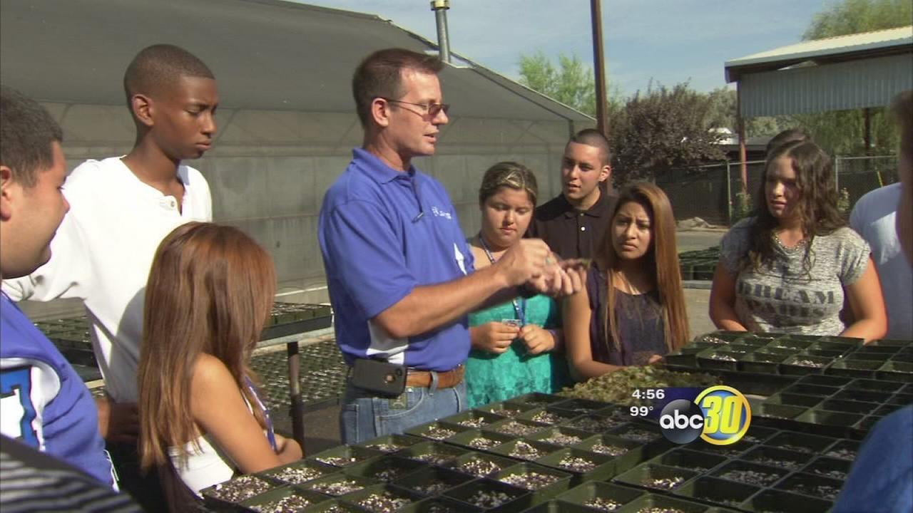 Ag education paying off at Atwater High School