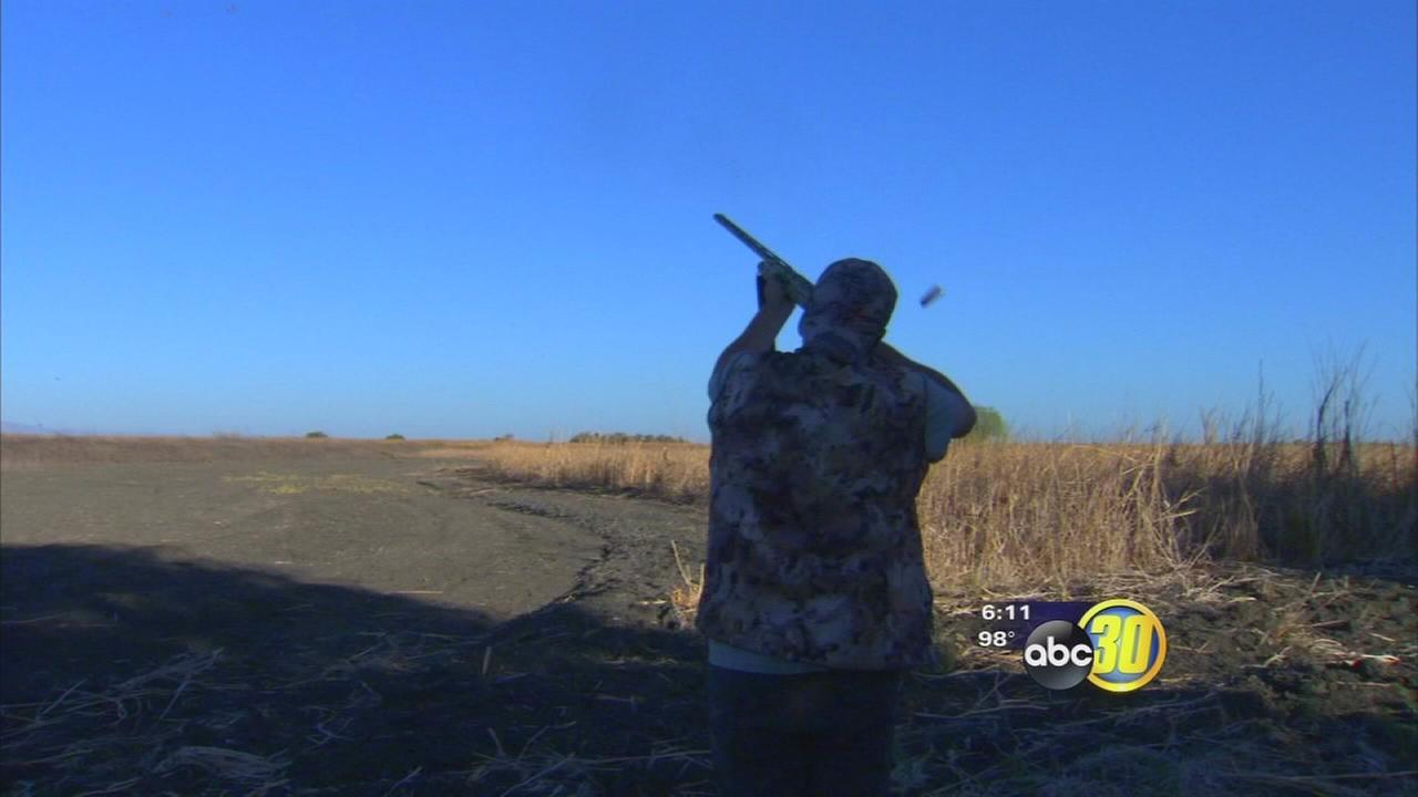 Drought impacts dove hunting season