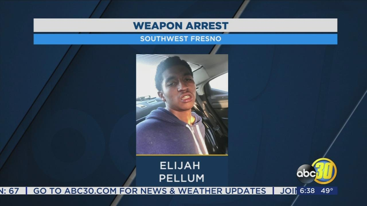 Teen arrested for threatening someone with gun at Fresno park