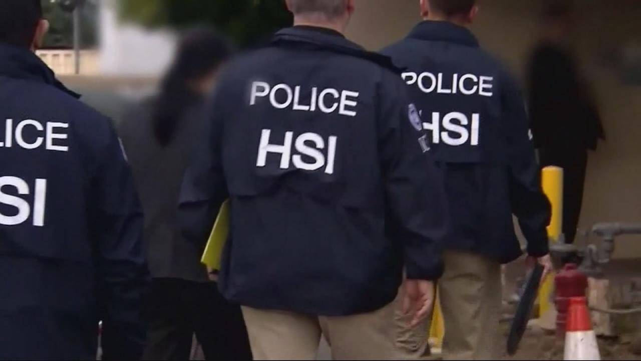 ICE arrests dozens in Los Angeles area immigration crackdown