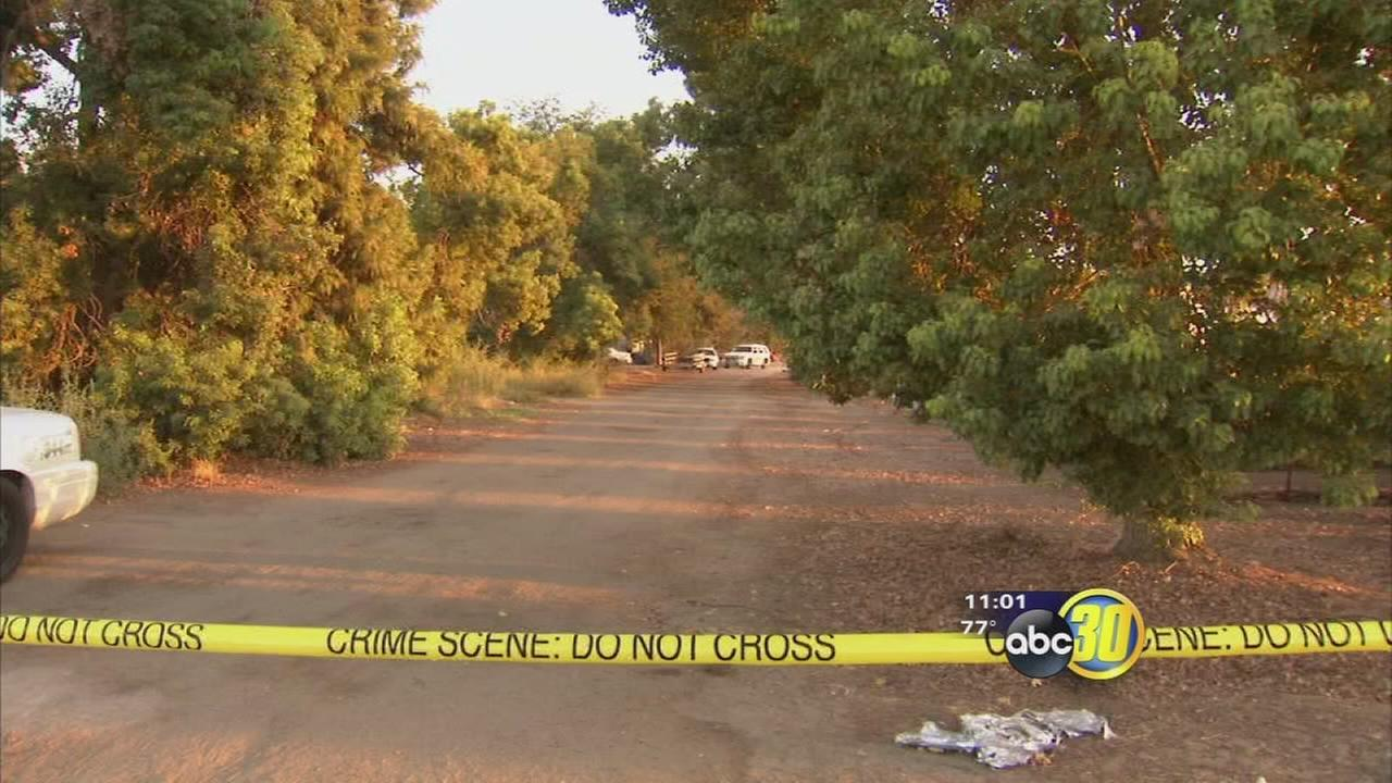 1 killed, 1 injured in marijuana grow shooting near Cutler