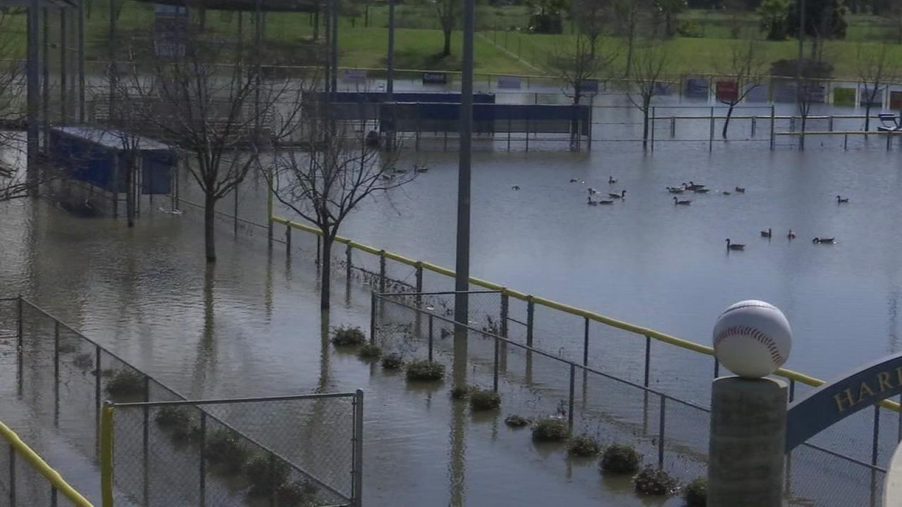 Flooded baseball field put a damper on local little leagues