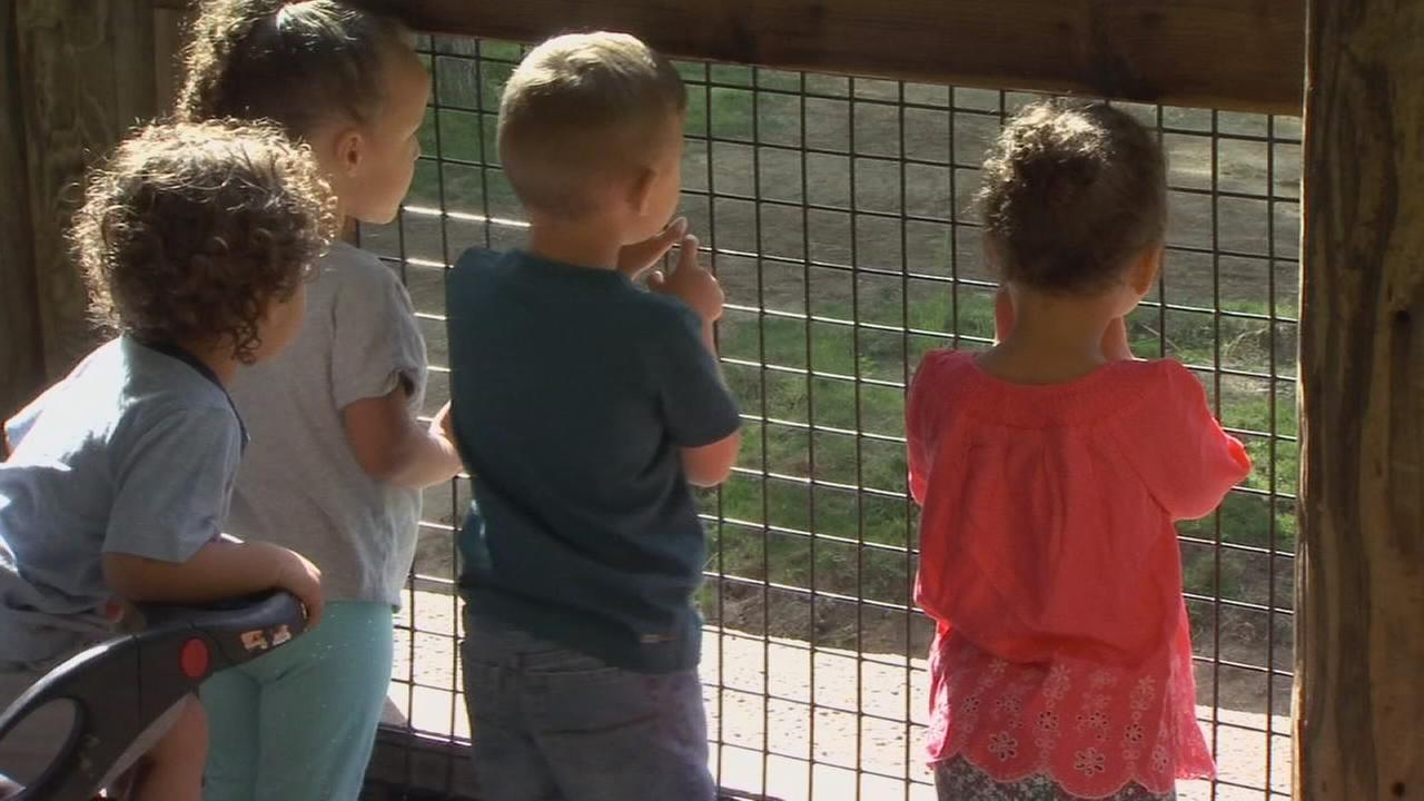 Warmer weather brings thousands to Fresno Chaffee Zoo