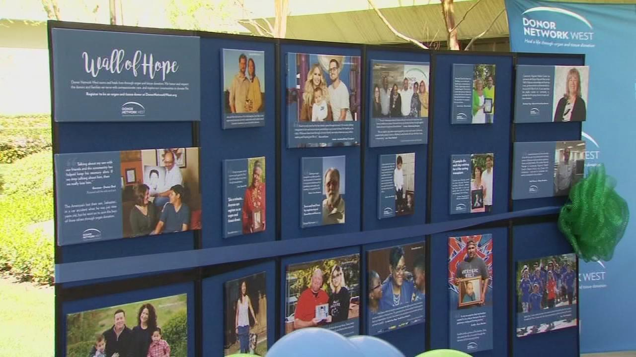 Wall of Hope shows impact of organ donations