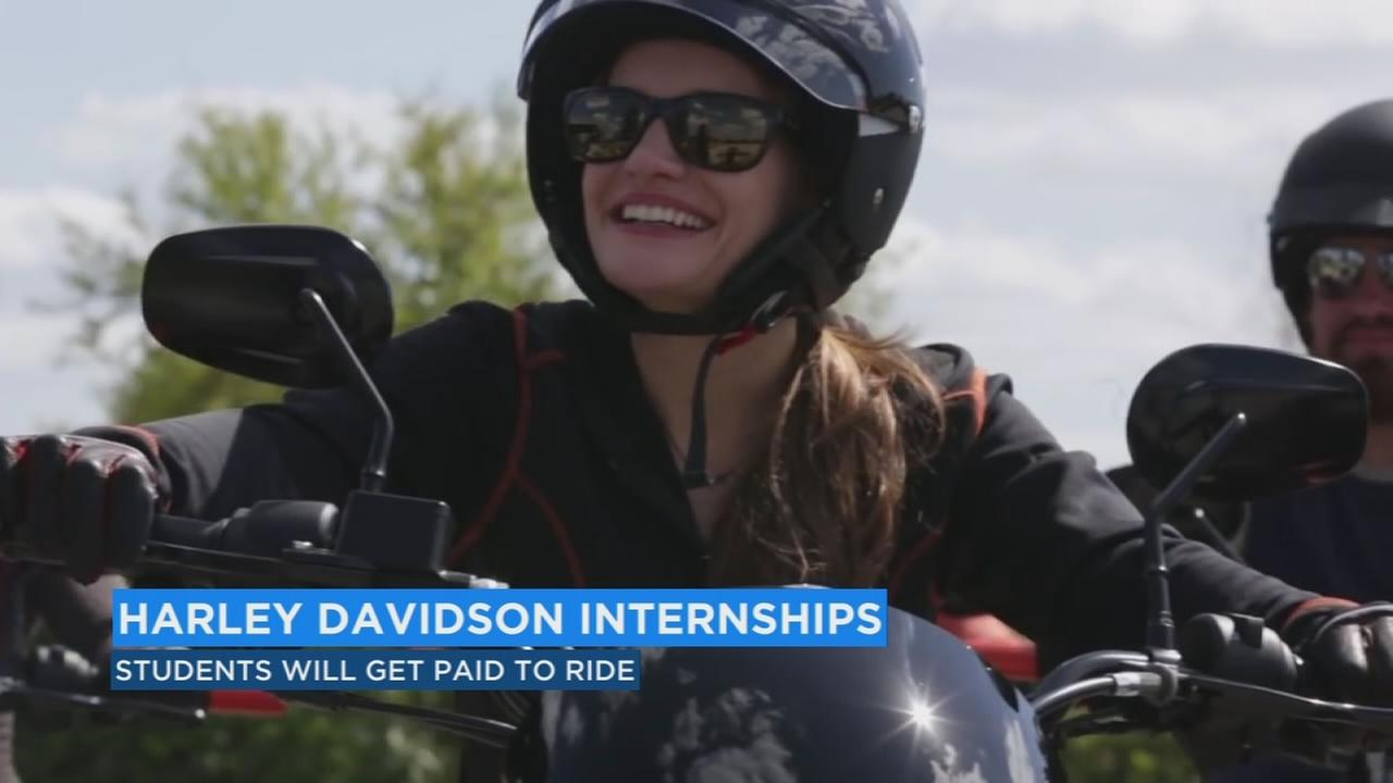 Harley Davidson Find your Freedom internship