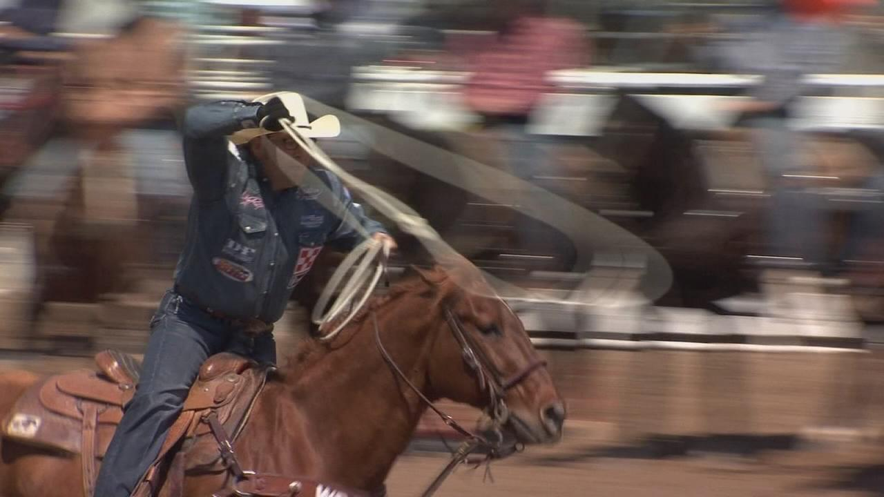 Hundreds of cowboys enter qualifying runs for Clovis Rodeo