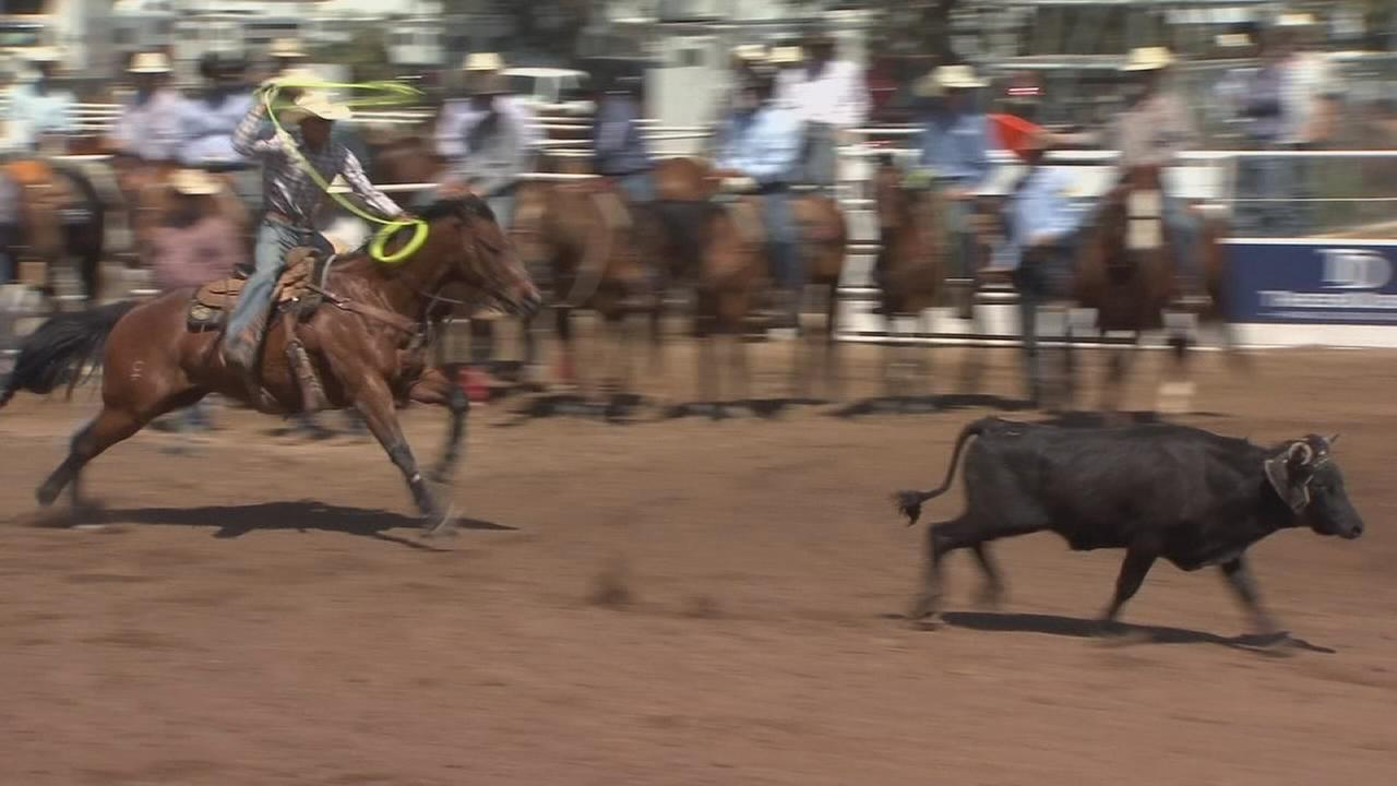 Saddle up! 104th Clovis Rodeo kicks off