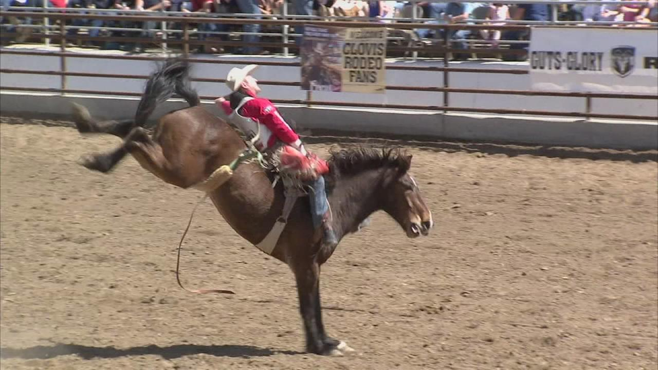 The excitement of the rodeo returns to Clovis