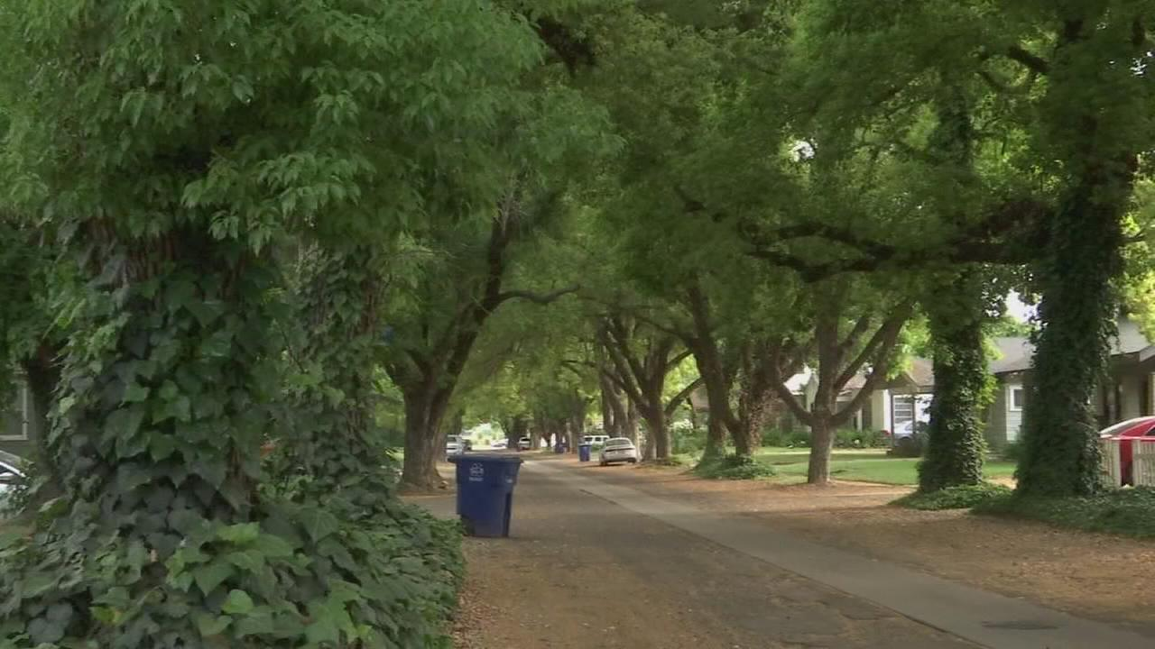 Kingsburgs historic Shady Lane getting a makeover