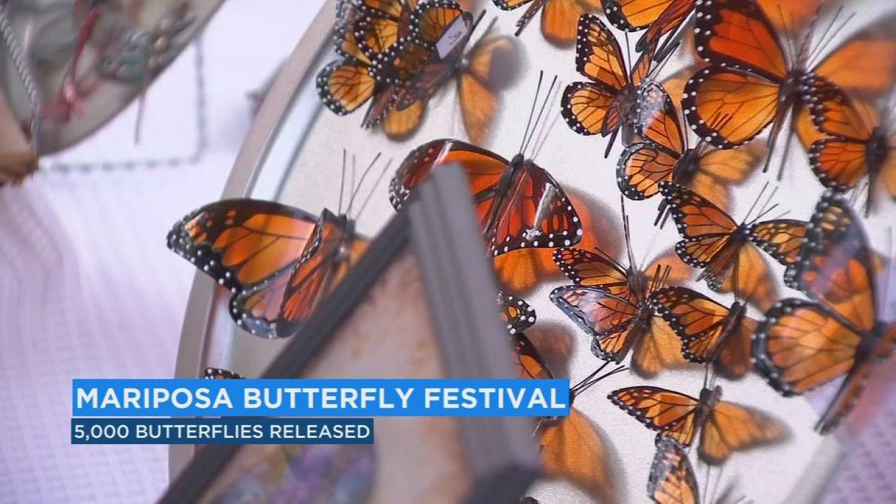 Annual festival brought hundreds around the world to Mariposa