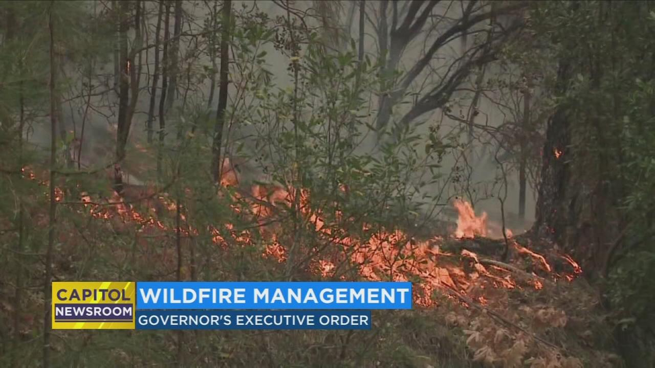 California governor signs order to reduce wildfire danger