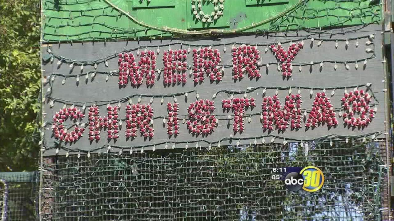 Christmas Tree Lane homeowner already decorating for holidays
