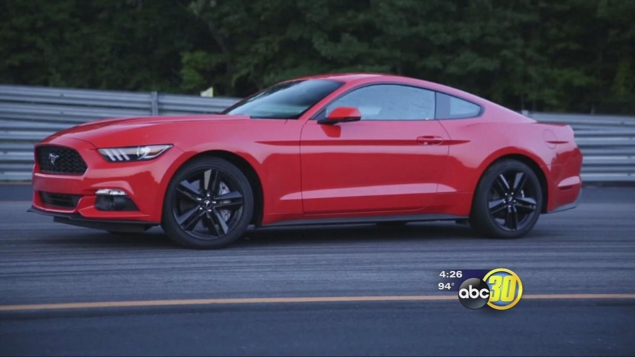 Ford Mustang at 50