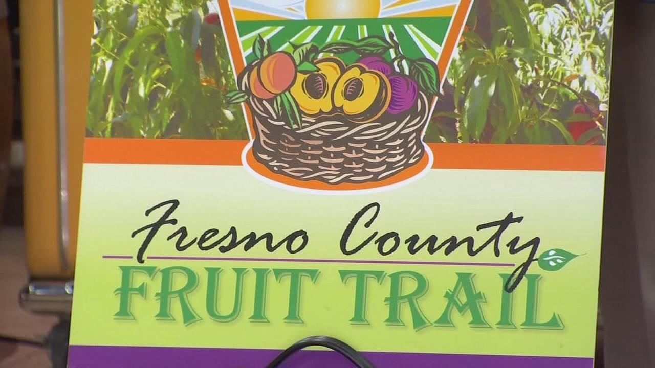 Fruit trail bus gets ready for its second ride through Fresno County