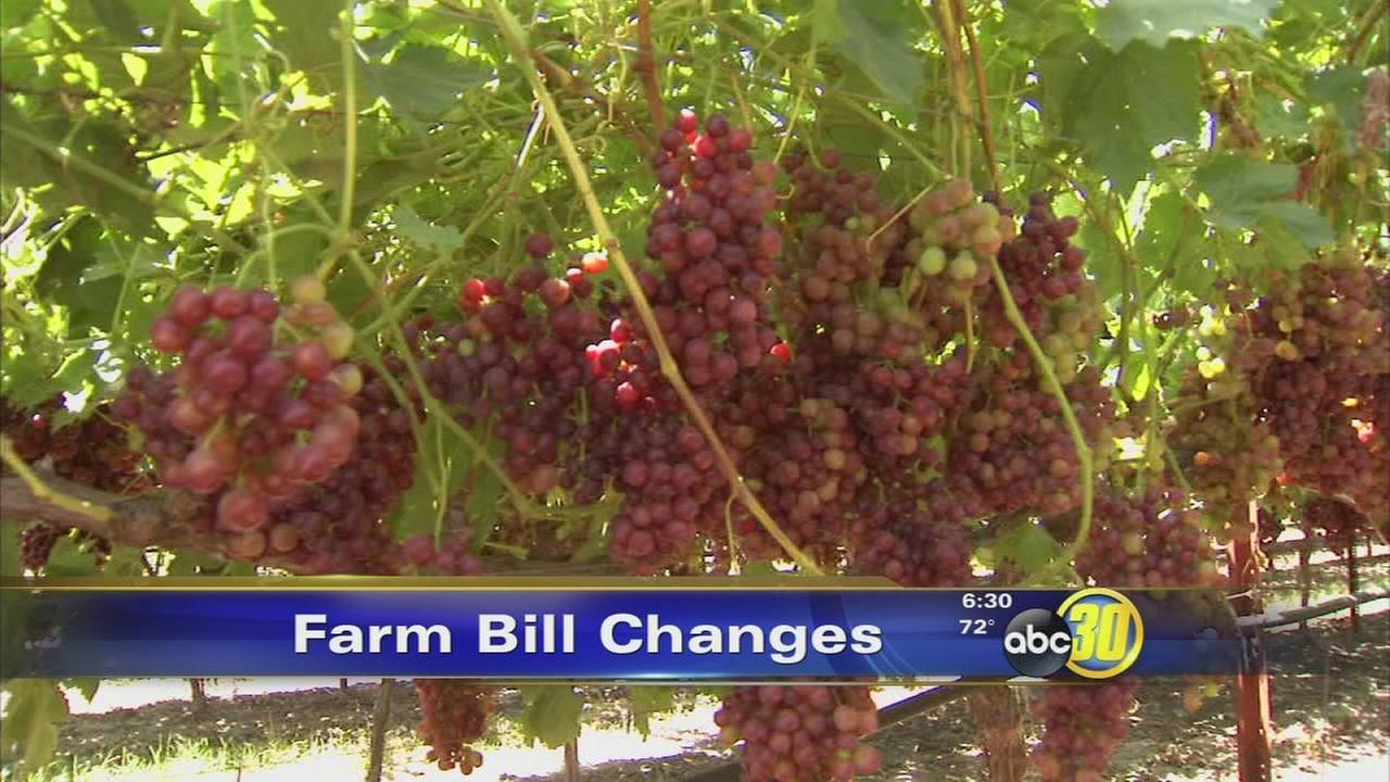 Newly passed farm bill promises support for farmers