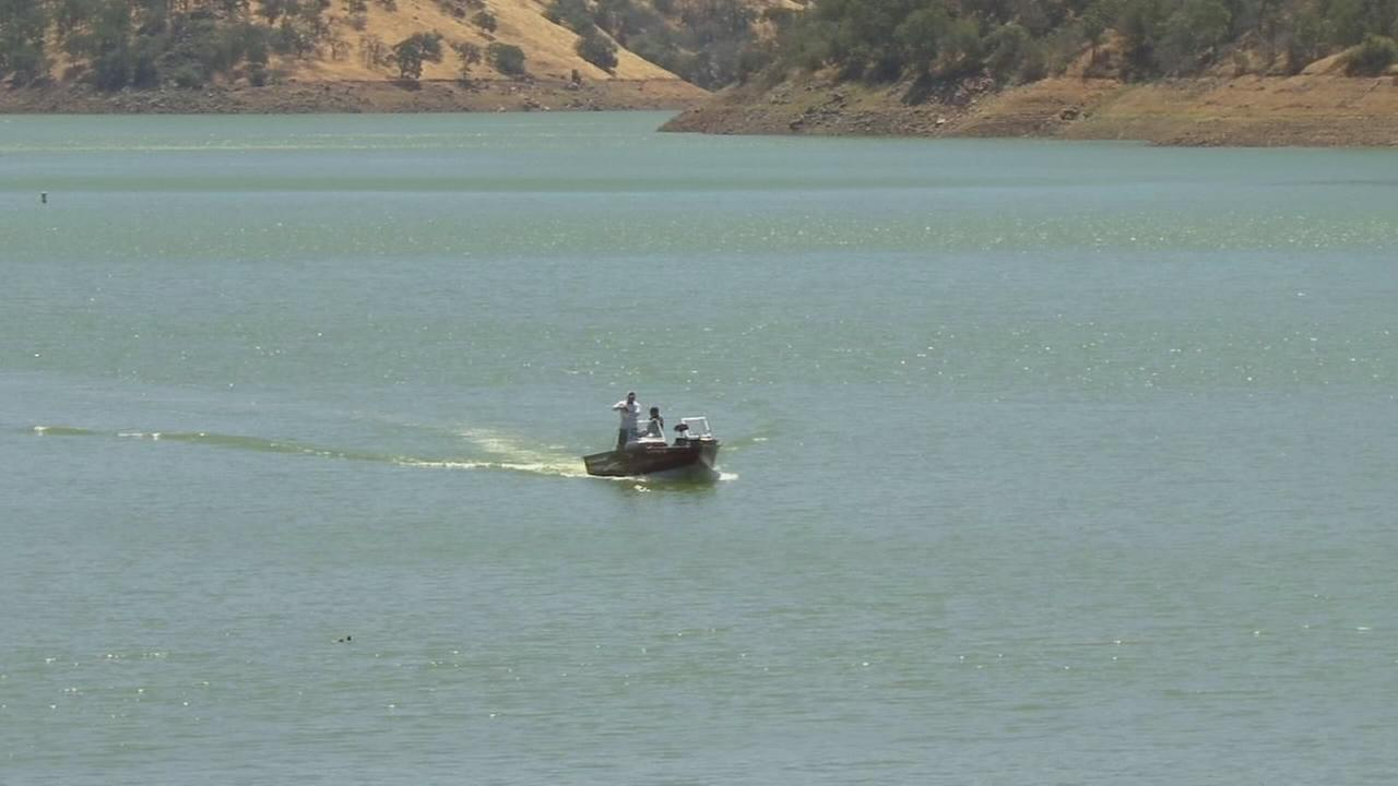 Algae raises concerns at Pine Flat Reservoir