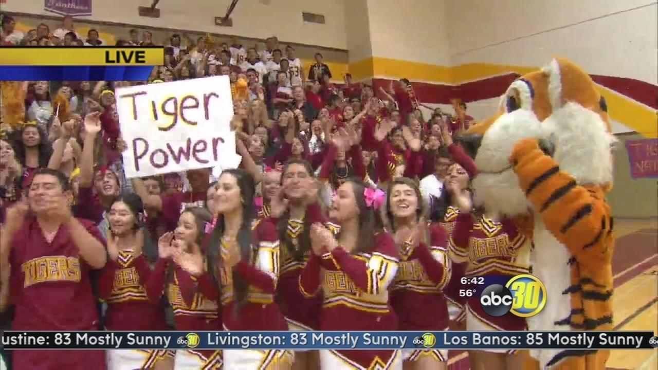 Friday Morning Football: Los Banos High School Tigers - 2 of 2