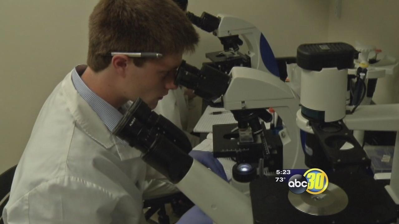 Training the body to fight melanoma