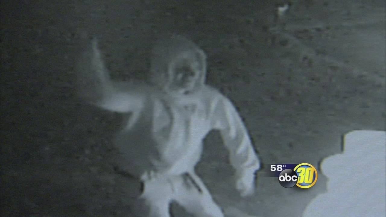Caught on camera: Vandal hits Clovis holiday decorations
