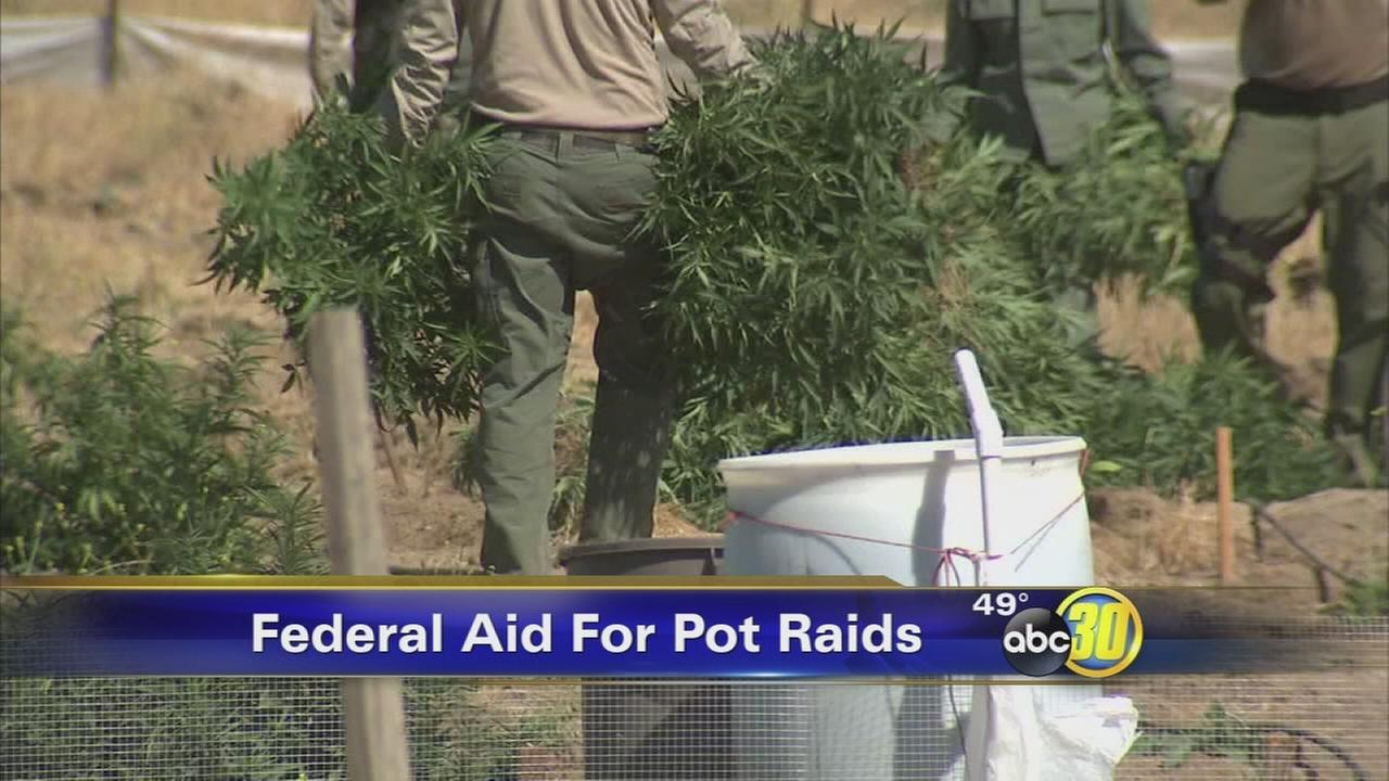 Funding cut to effect agencies fighting illegal marijuana in Fresno County
