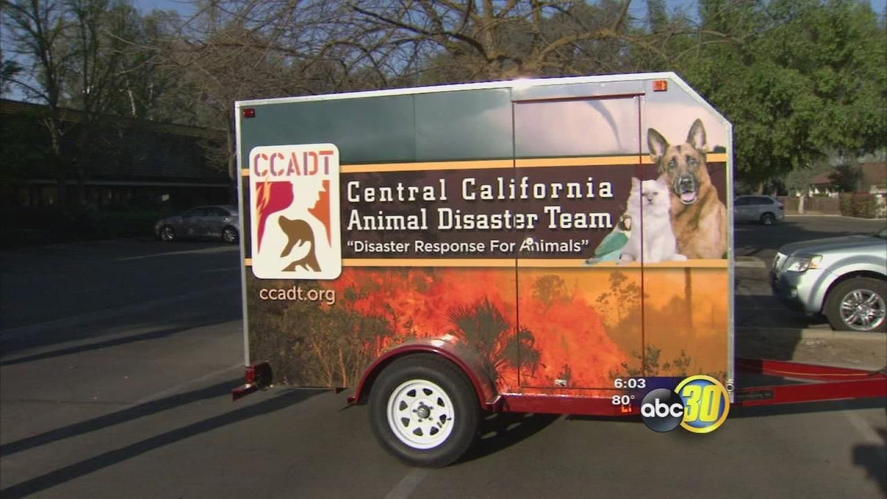 Animal Disaster Team prepares for heavy fire season