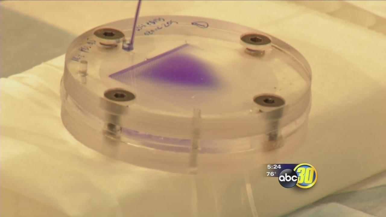 Bioreactor generates human platelets