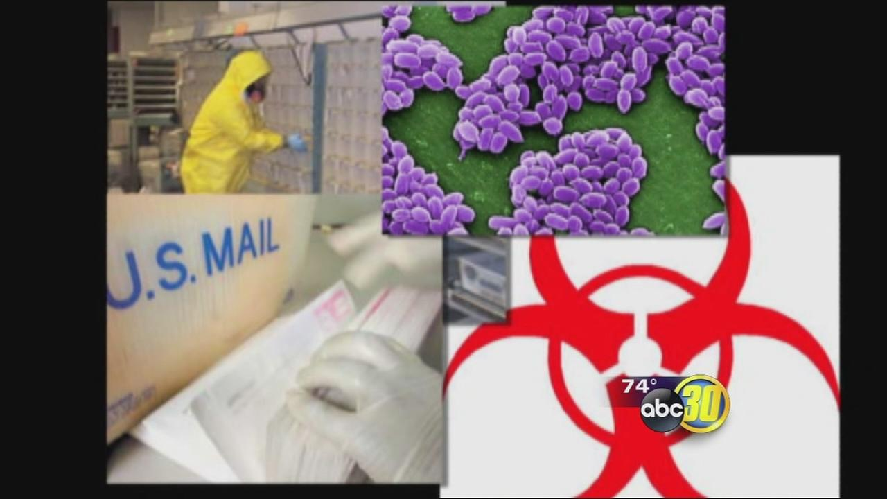 Can you fight cancer with anthrax?