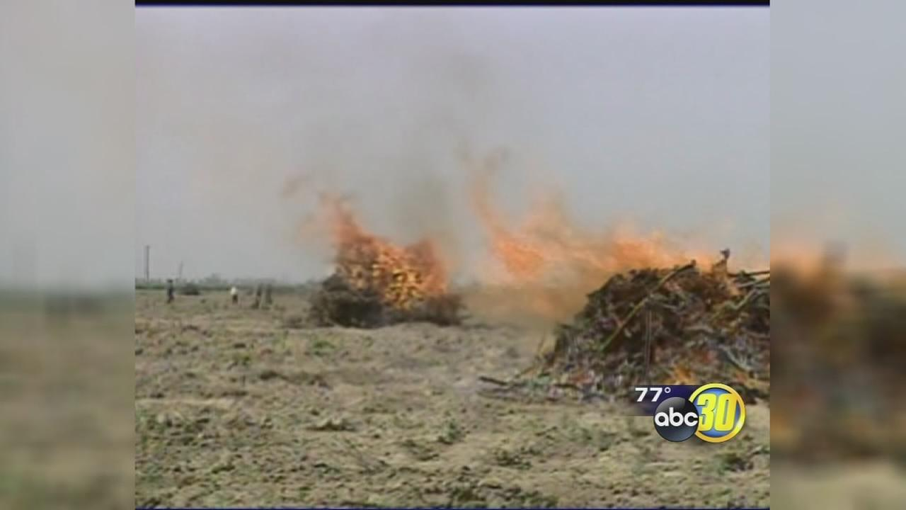 Dry conditions prompt burn ban in parts of Tulare County