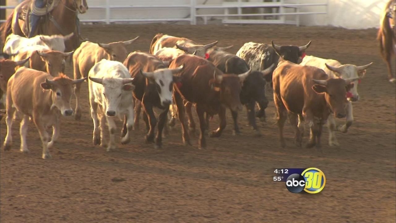 Plenty of work goes into getting Clovis Rodeo ready