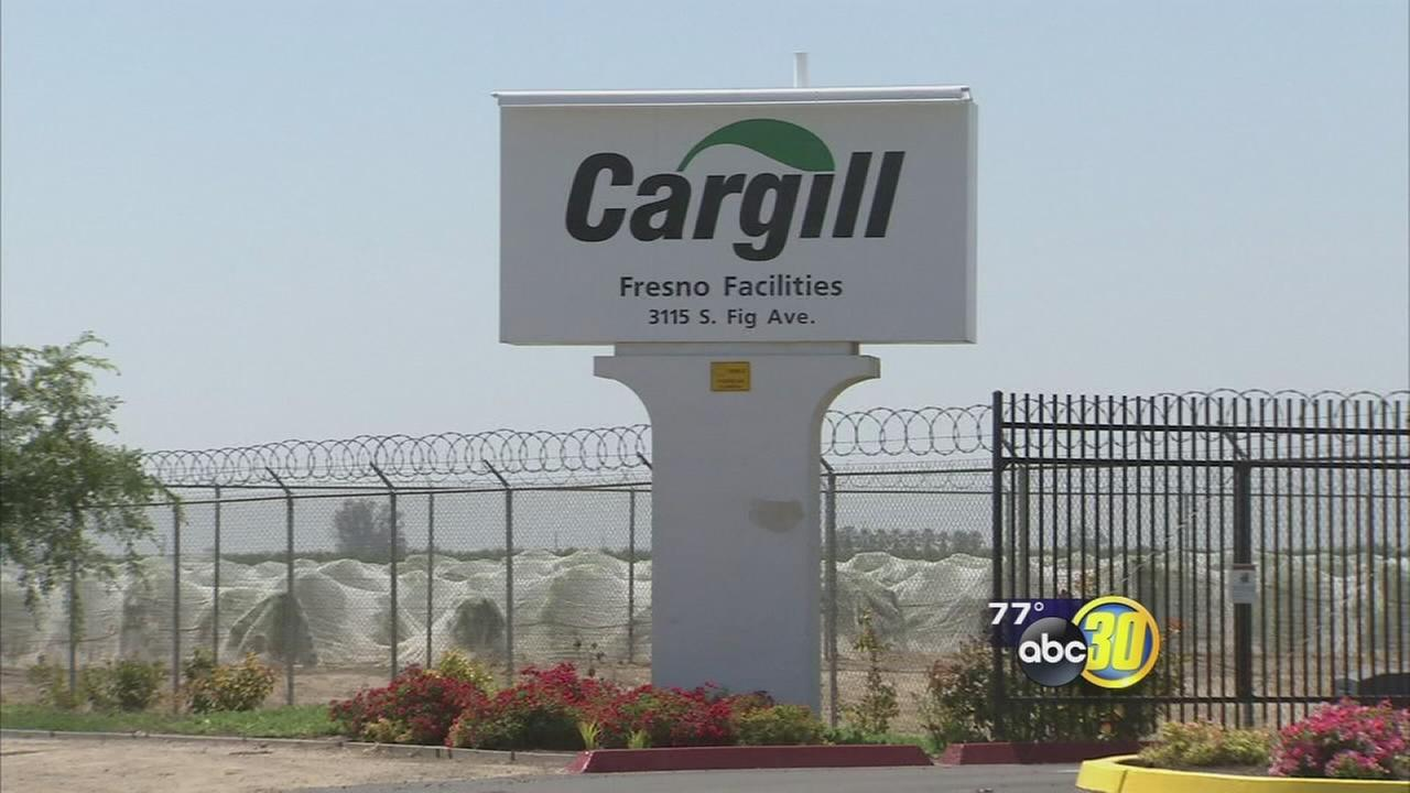 Fresno beef processing plant Cargill using Tesla technology to save on energy costs