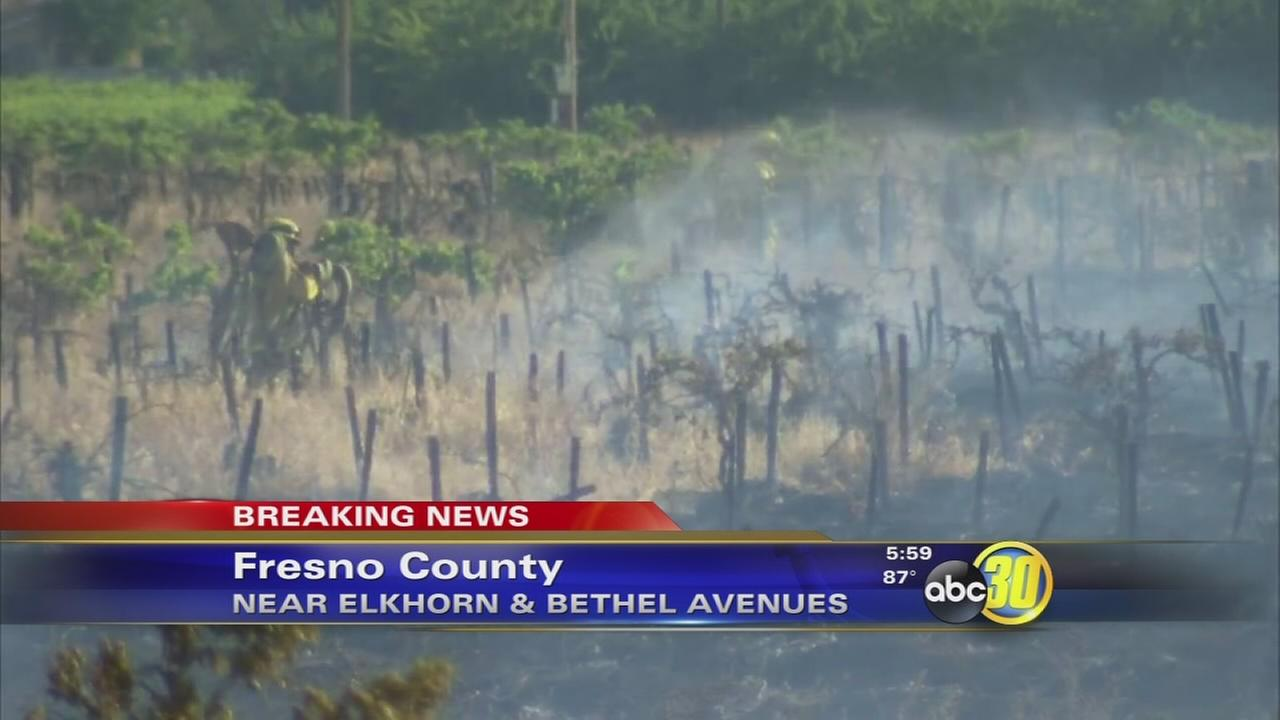 Crews contain vegetation fire near Kingsburg