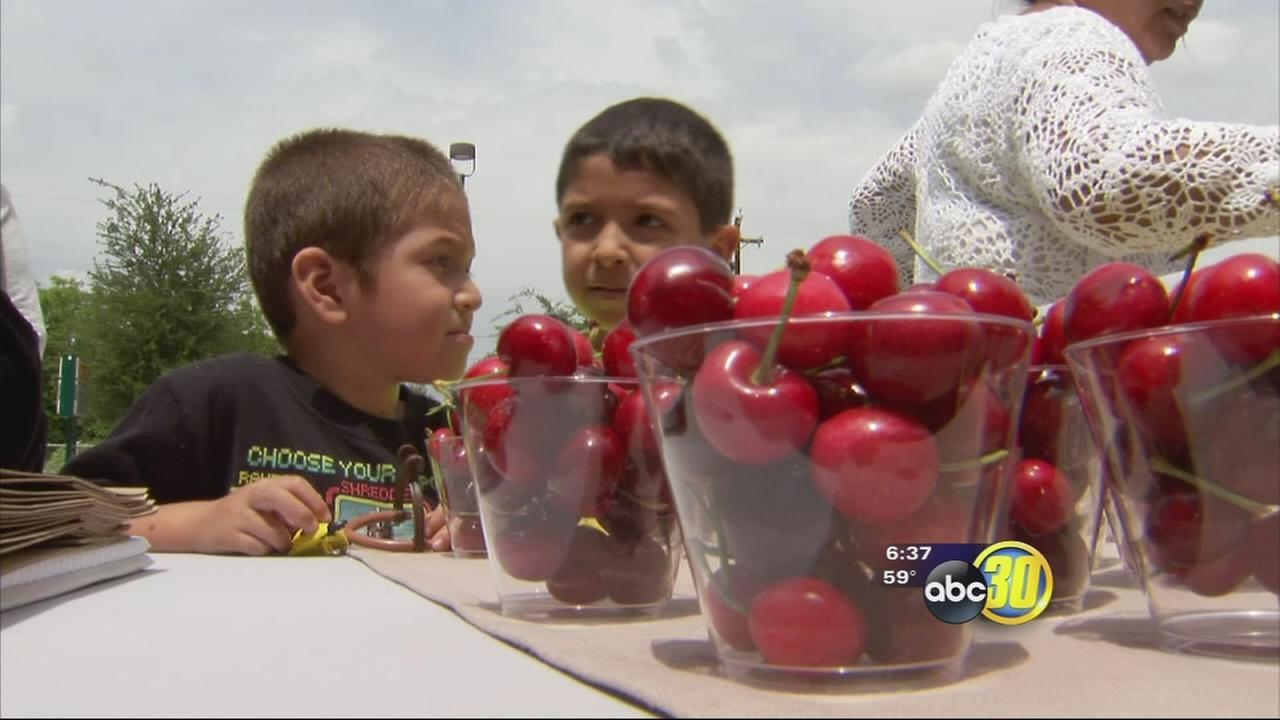 Promoting healthy living in South East Fresno