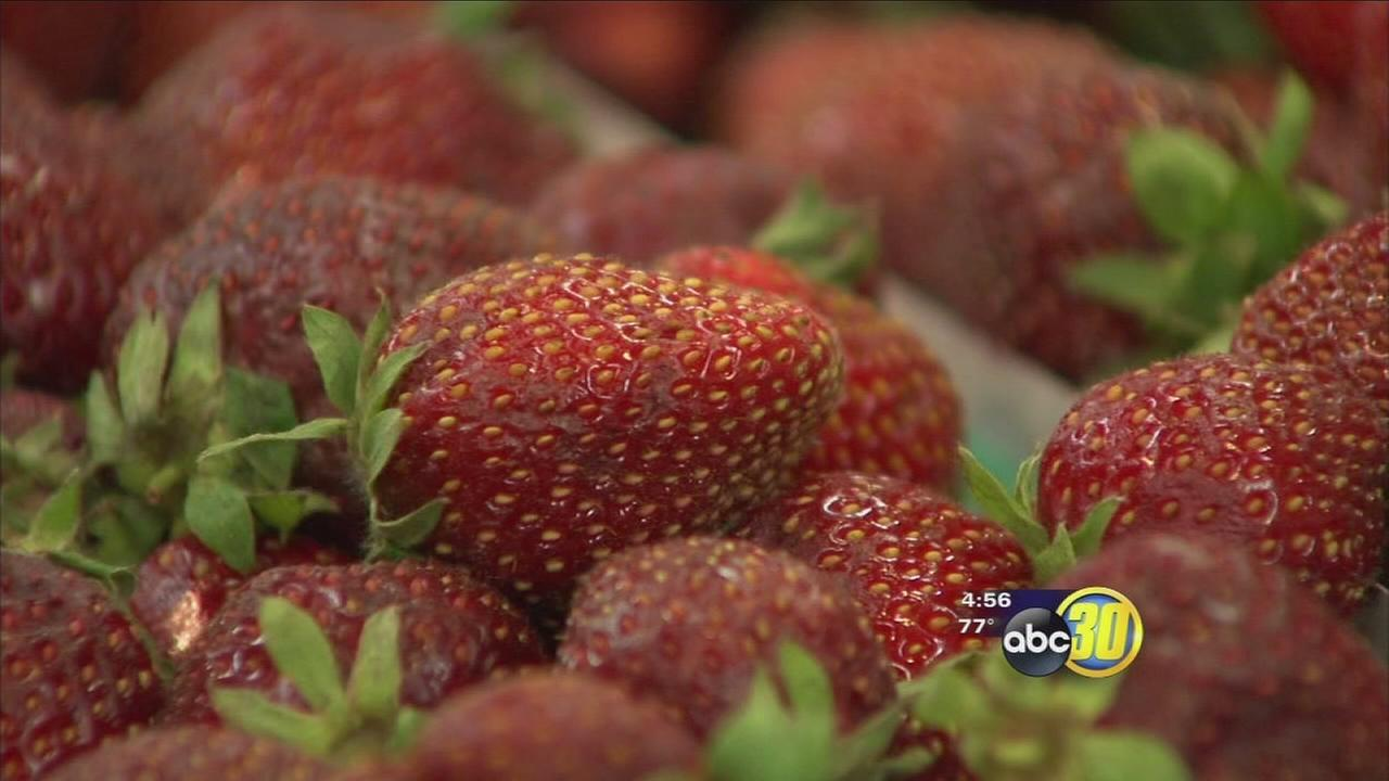 Fresno County Fruit Trail