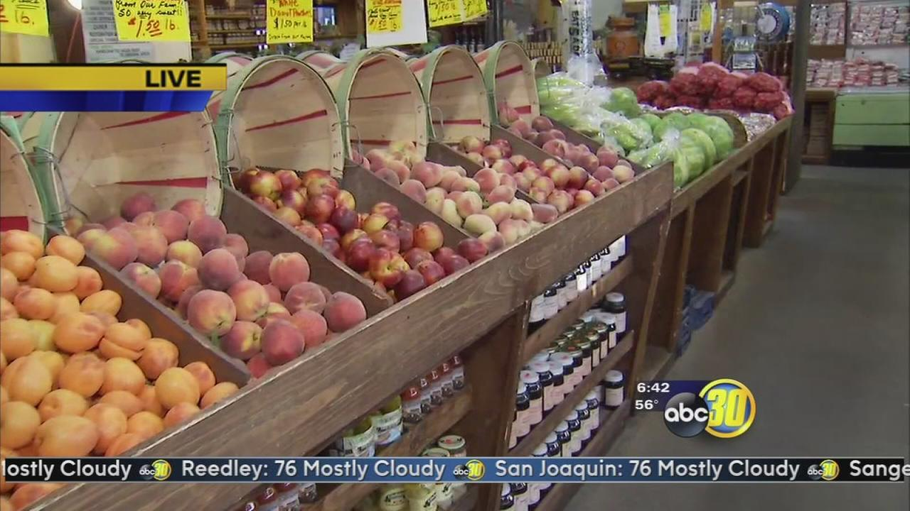 Fresno County Fruit Trail opens has harvest season starts
