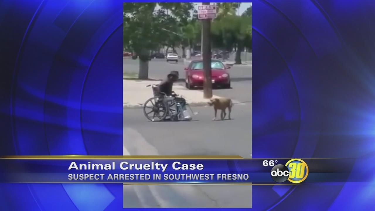 Caught on camera: Fresno man in wheelchair beats dog