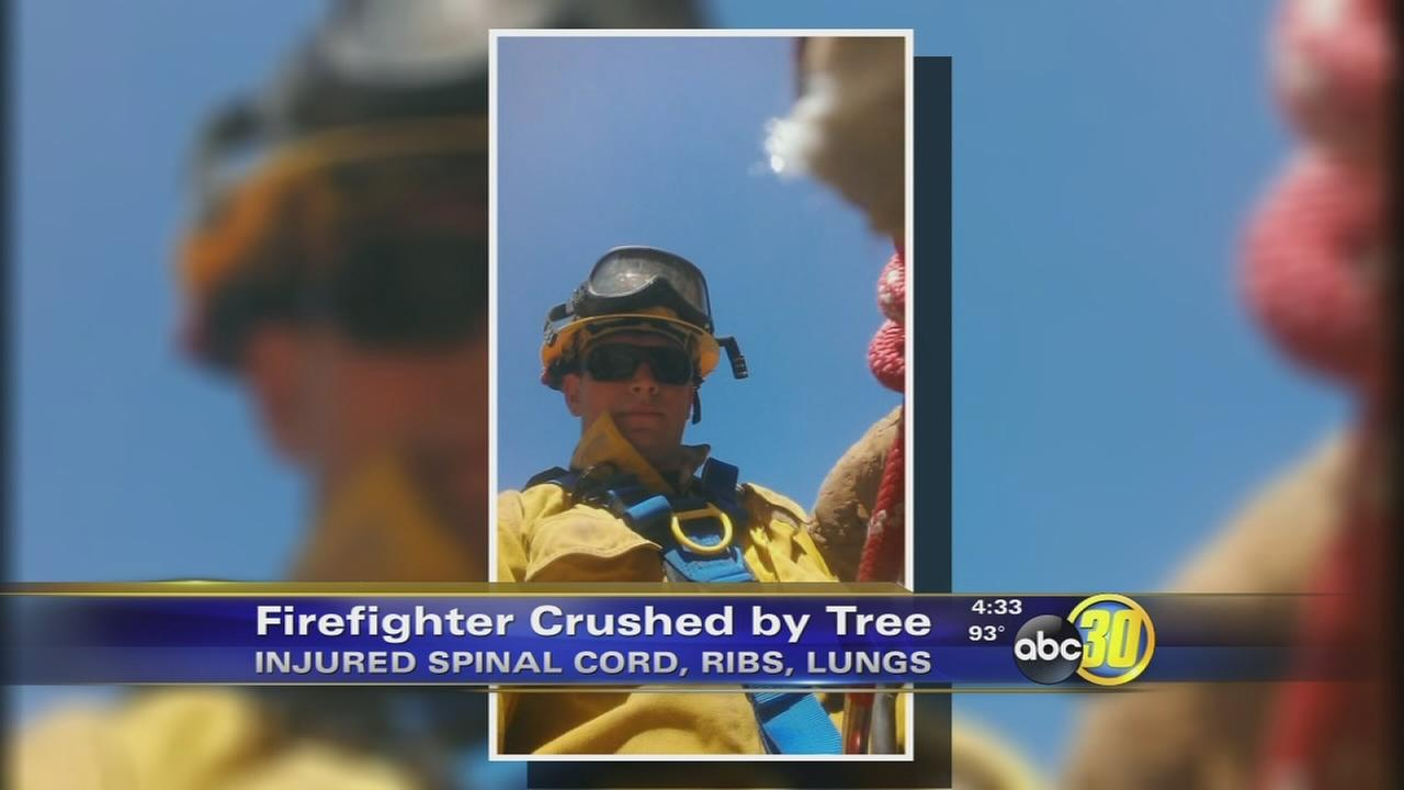 Firefighter crushed by tree in Tulare County remains critical