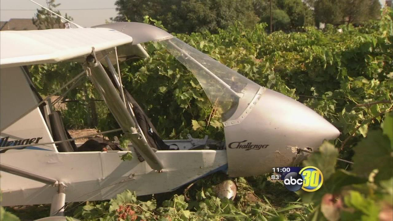 Clovis man crashes ultralight aircraft into vineyard near Easton