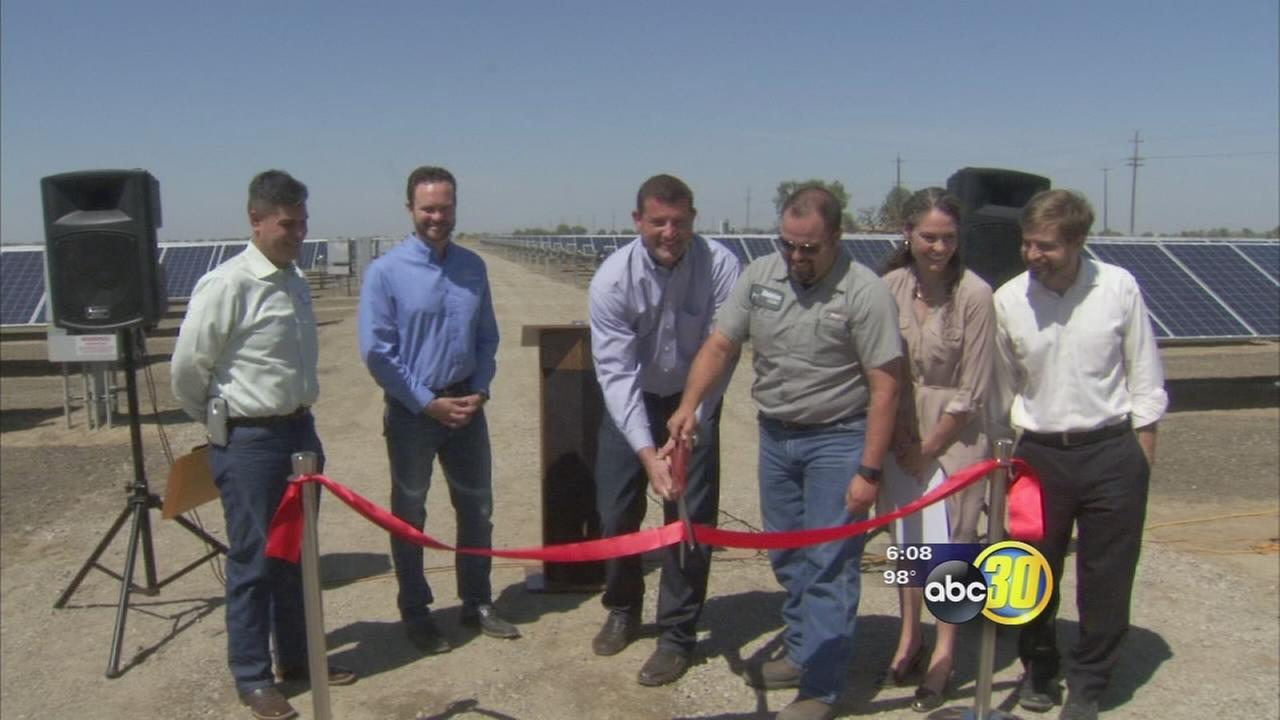 Hanford dairy has solar energy farm installed