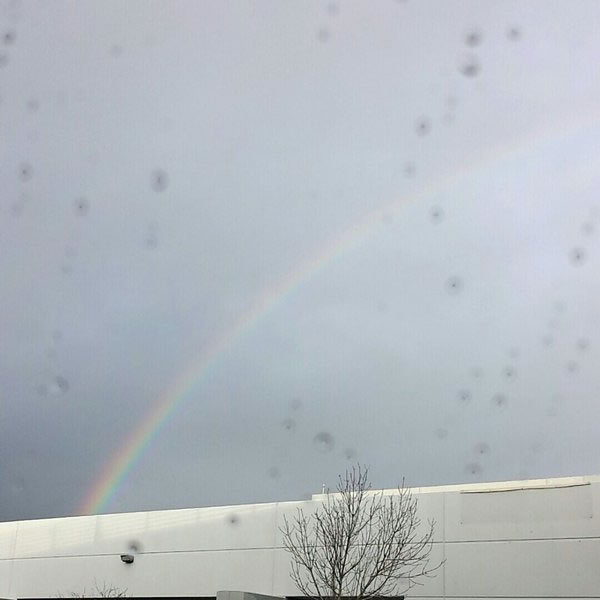 <div class='meta'><div class='origin-logo' data-origin='none'></div><span class='caption-text' data-credit='KGO-TV/ Molly Miklos'>This photo shows a rainbow over Milpitas, Calif. on Tuesday, January 5, 2016.</span></div>