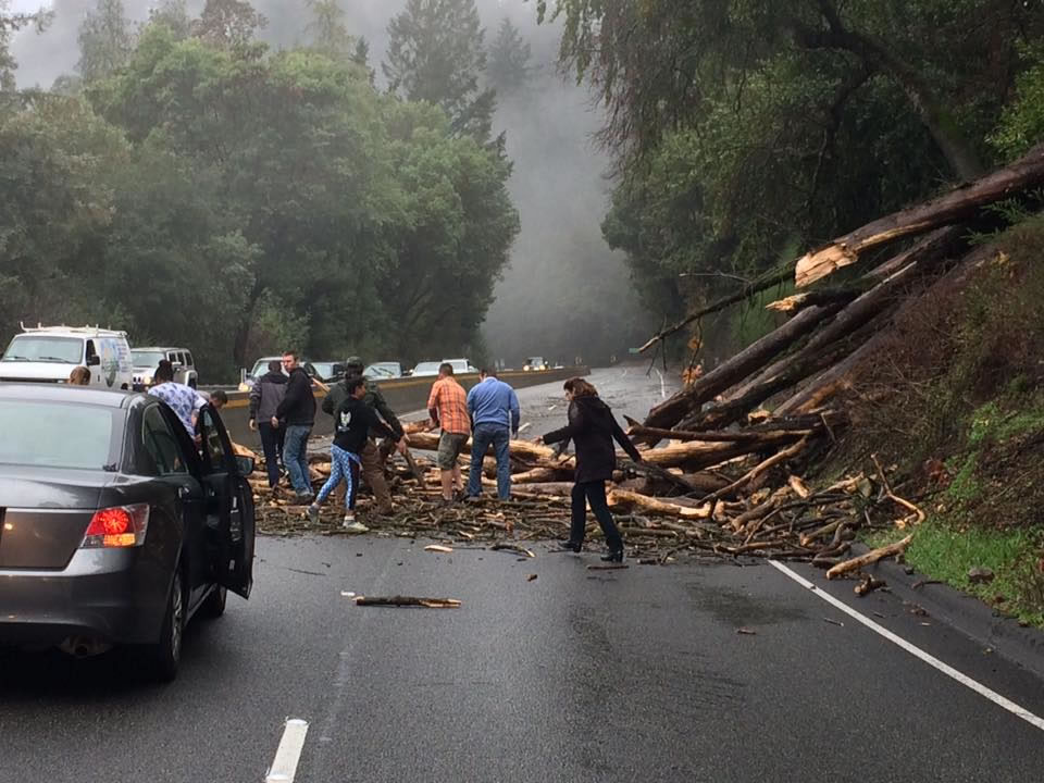 <div class='meta'><div class='origin-logo' data-origin='none'></div><span class='caption-text' data-credit='Photo submitted to KGO-TV via uReport'>A tree fell across a freeway in Santa Cruz, Calif. on Wednesday, January 6, 2016.</span></div>
