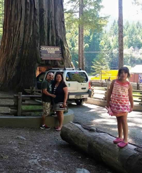 <div class='meta'><div class='origin-logo' data-origin='none'></div><span class='caption-text' data-credit='Photo submitted to KGO-TV by Helen Veliz/Facebook'>ABC7 viewers shared photos of their visit to the Calaveras, Calif. tunnel tree. The iconic tree toppled over during a massive storm in the Bay Area on Sunday, January 8, 2017.</span></div>