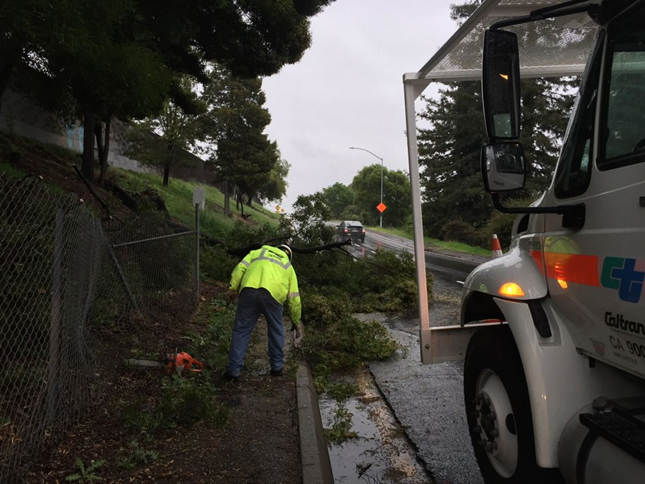 <div class='meta'><div class='origin-logo' data-origin='none'></div><span class='caption-text' data-credit='KGO-TV'>Crews work to remove a fallen tree in Oakland, Calif., on Saturday, March 5, 2016.</span></div>
