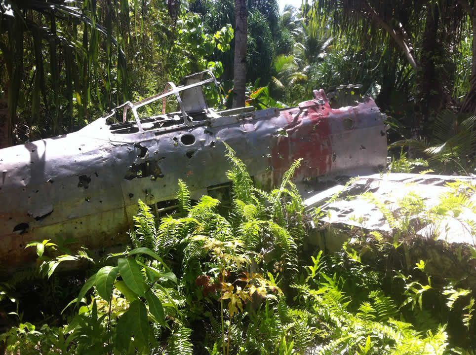 "<div class=""meta image-caption""><div class=""origin-logo origin-image none""><span>none</span></div><span class=""caption-text"">This image taken in March 2016 shows the remains of a Japanese Zero plane from WWII in the bushes on the remote island of Woleai, a tiny atoll in Micronesia. (The Exploratorium)</span></div>"