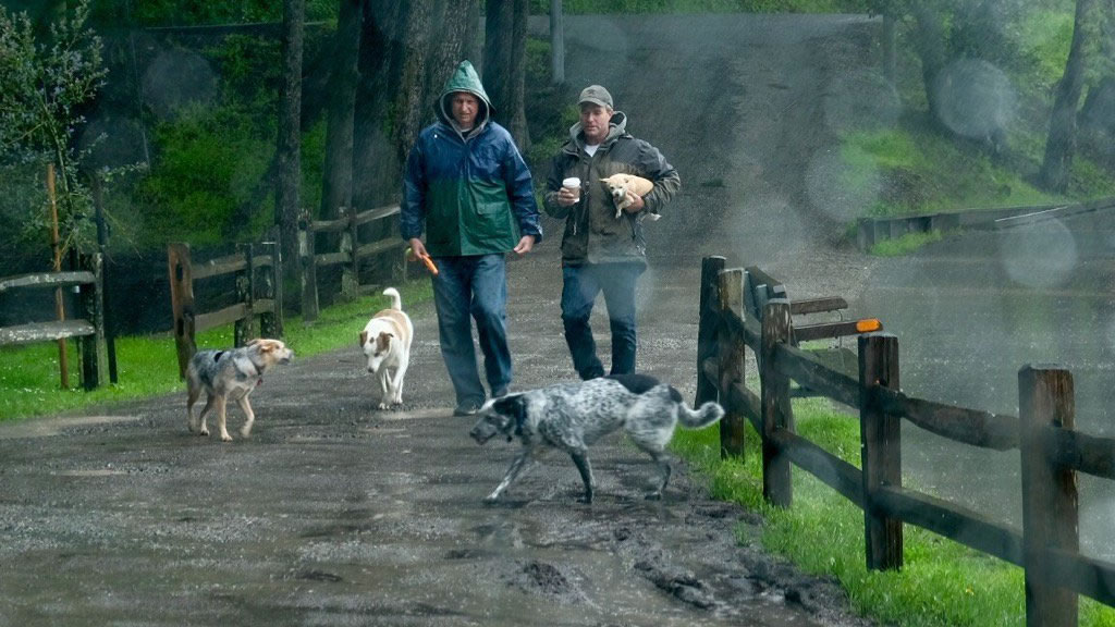 <div class='meta'><div class='origin-logo' data-origin='none'></div><span class='caption-text' data-credit='KGO-TV/Wayne Freedman'>Rain didn't stop these two from walking the dogs in Mill Valley, Calif., on Friday, March 11, 2016.</span></div>
